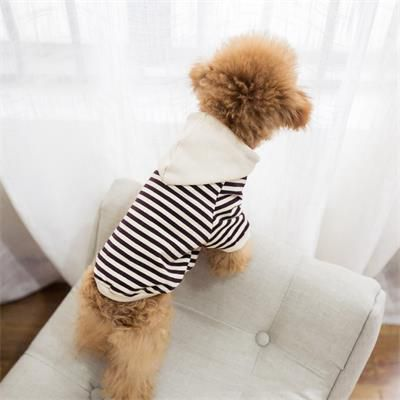 Apparel Dog Clothes 06-0464