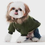Designs Dog Clothes 06-1236