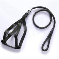Purch Double Dog Leash Wholesale Dog Leash Retractable Nylon Dog Leash Rope, Ningbo GMT Leisure Products Co.,Ltd.Offer more 2,000 Pet products