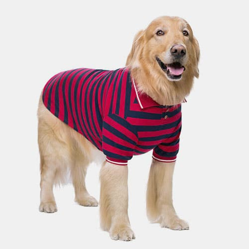 Pet Clothes Thin Striped POLO Shirt Two-legged Summer Clothes 06-1011-1 Dog Clothes: Shirts, Sweaters & Jackets Apparel 06-1011-1